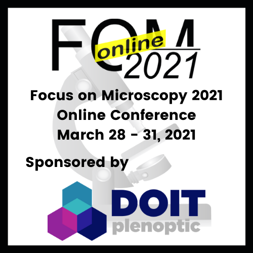Doitplenoptic at FOM 2021